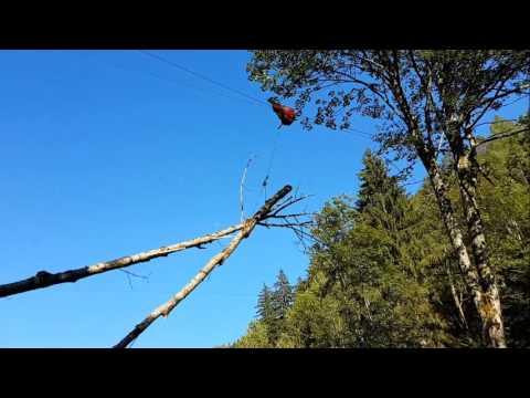 Seilkran Cable Line System Skyline logging timber harvesting TST tower yarder