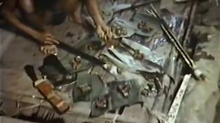 Nova: The Lost Tribe - Full 1993 Tasaday Documentary