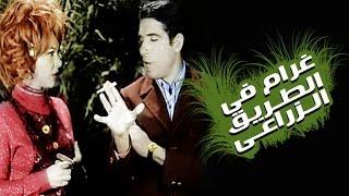 غرام فى الطريق الزراعى / Gharam Fi El Tareeq El Zera3y