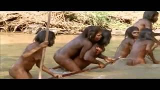 قرود القرداحة قبل 50 عام