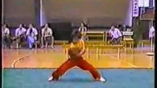 Wushu - Nan Quan...lots of routines