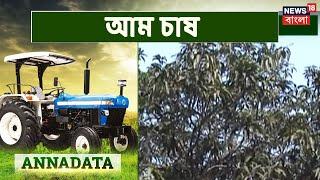 Mango Farming In Malda | Annadata | June 11, 2021