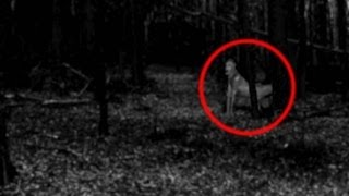 REAL DEMONS CAUGHT ON TAPE! (CREEPY)