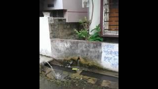 padmapukur water wastage