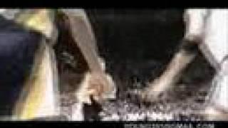 Reggie Miller - Mr. Clutch
