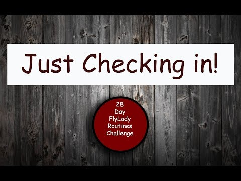 Xxx Mp4 28 Day Flylady Routines Challenge 02 19 18 I Am Back 3gp Sex