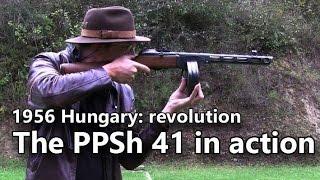 PPSh 41 submachine gun in action - Guns of the 1956 Revolution Part 1