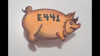 صدق او لا تصدق: انت تاكل الخنزير منذ طفولتك