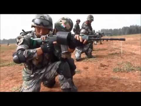 Indo-China combined military training exercise, Hand-in-Hand,