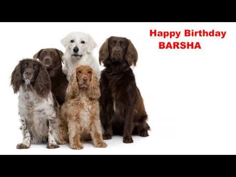 Xxx Mp4 Barsha Dogs Perros Happy Birthday 3gp Sex