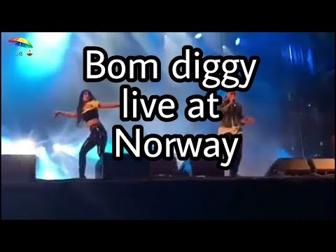 Bom diggy Jasmin walia and Zack knight live concert at Norway-hdvid.in