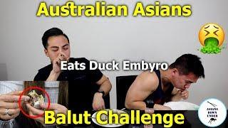 Australian Asians Eat BALUT   BALUT CHALLENGE (Duck Embryo)