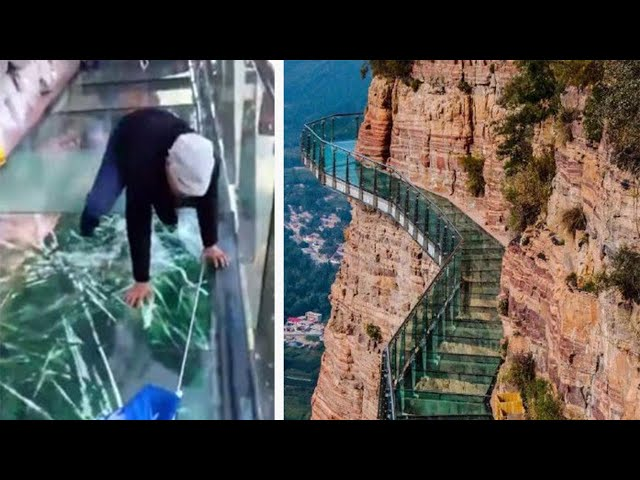 TomoNews Daily: China's cracked glass skywalk; chicken and duck on moving car in china - 10/13/2017
