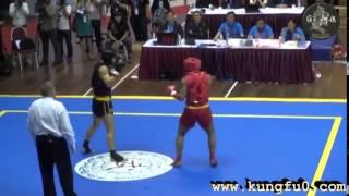 نهائيات بطولة العالم 2013 فى الووشو كونغ فو (ساندا)