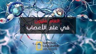 العام مليون ح1: في علم الأعصاب - أفلام وثائقية