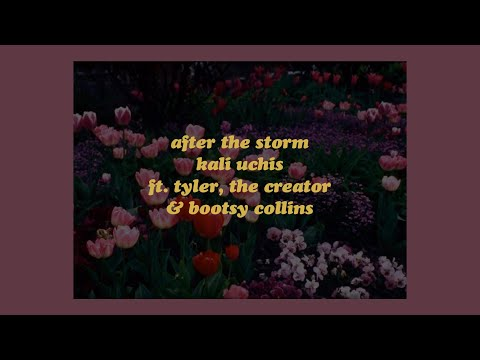 After The Storm - Kali Uchis ft. Tyler, The Creator & Bootsy Collins (lyrics) mp3