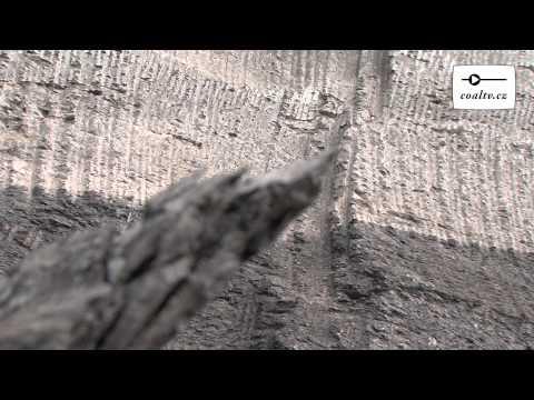 Uhelnou sloj přerušilo staré říční koryto