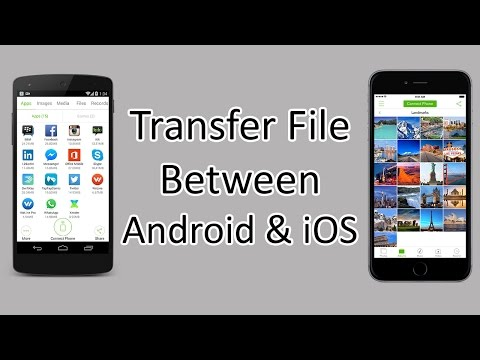 Xxx Mp4 Xender How To Transfer Files Between Android And IOS 3gp Sex