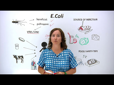 What is E.Coli What can you do to protect yourself and others