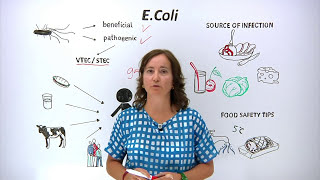 What is E.Coli? What can you do to protect yourself and others?
