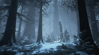 1 Hour of Dark Winter Music & Medieval Fantasy Music