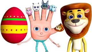 Learn Wild Animal Sounds | Surprise Eggs For Children | VeeJee Surprise Eggs Finger Family Series