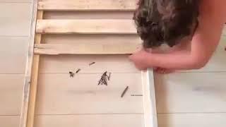 DIY & Crafts   DIY Baby Crib using Pallet Wood Credit