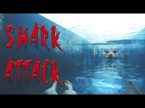 Shark Attack waterslide. My AquaVenture Waterpark experience at Atlantis The Palm Dubai.