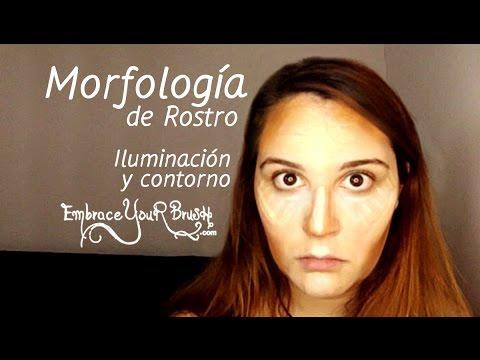 Morfología de Rostro - Iluminación y Contorno (Argentina) EmbraceYourBrush.com