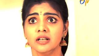 Gokulamlo Seeta | 20th January 2017  | Latest Promo