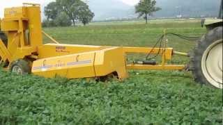 Fresh market bean harvester one row - Oxbo BH100 | Sweere