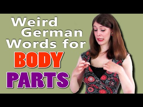 Weird German Words for BODY PARTS