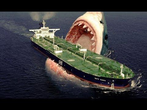 Megalodon Sharks still lives!! Evidence that MEGALODON is not extinct.
