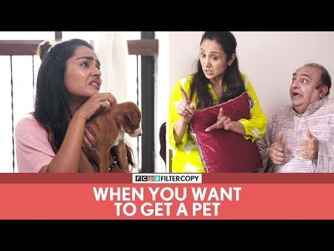 Xxx Mp4 FilterCopy When You Want To Get A Pet Ft Apoorva Arora 3gp Sex