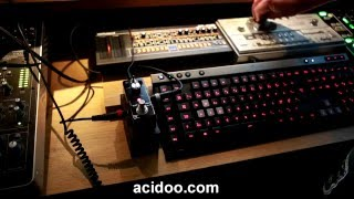 EX DR-15 Rat Distortion - TT-303