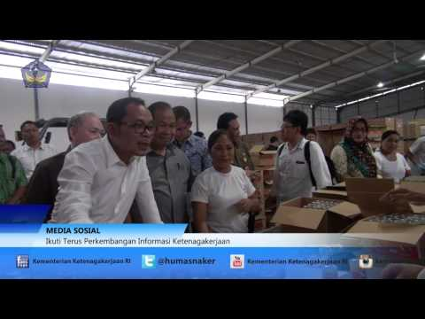 Sidak Menaker Hanif Dhakiri Ke PT Carvina Trijaya Makmur, Sulawesi