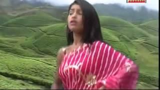 Teen Din Bhaile Na Gawanwa | Bhojpuri New Hot Song | Deelip