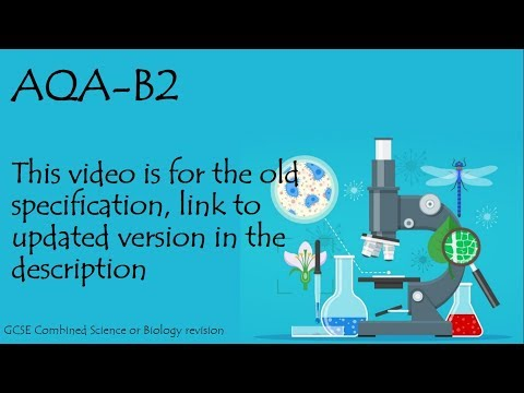 The whole of AQA B2 in only 49 minutes!!! GCSE biology or additional science revision