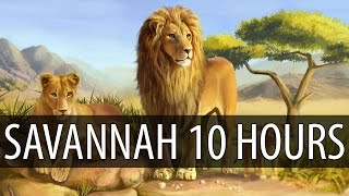 Diviners - Savannah (feat. Philly K) 【10 HOURS】