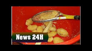 Bakery fined after using tennis racket to mash potatoes | News 24H