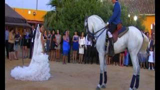 baile de caballo con novia