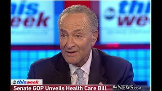 CHUCK SCHUMER ACCIDENTALLY JUST SLAMMED HILLARY CLINTON WITH A BRUTAL INSULT!