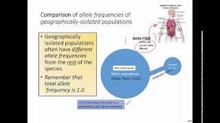 Comparison of Allele Frequencies of Geographically Isolated Populations (IB Biology)