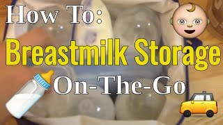 How To : Breastmilk On The Go Storage!