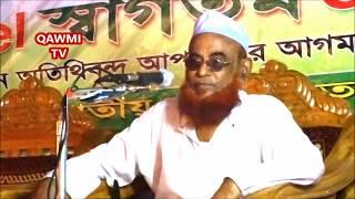 মিছিল দেয় যারা সিরাতুন্নবীর বিরুদ্ধে ওয়াজটি শুনুন Allama Nurul Islam Olipuri Bangla waz 2017