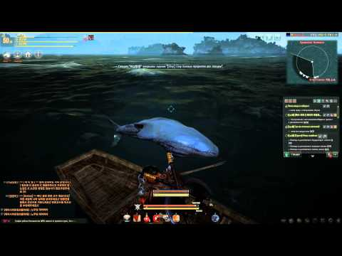 black desert пропала лодка