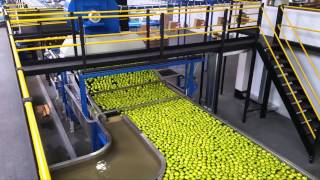 Packman - Apple Packing