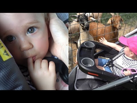 Xxx Mp4 Baby Layla Goes To The Petting Zoo 3gp Sex