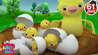 Five Little Birds | + More Nursery Rhymes & Kids Songs - ABCkidTV