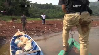 Tembak-tembakan Saat Penggerebekan Sabung Ayam di Pinggir Laut - Part 2 - 86